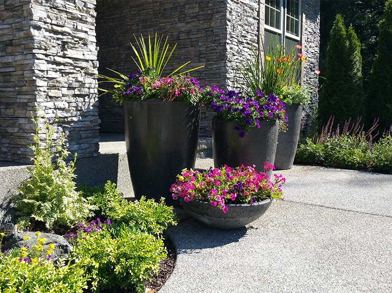 Decorative Cement Planter Pots