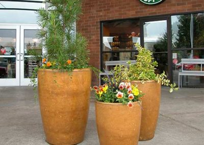 Commercial Concret Planters - Tuscan Gold Stain