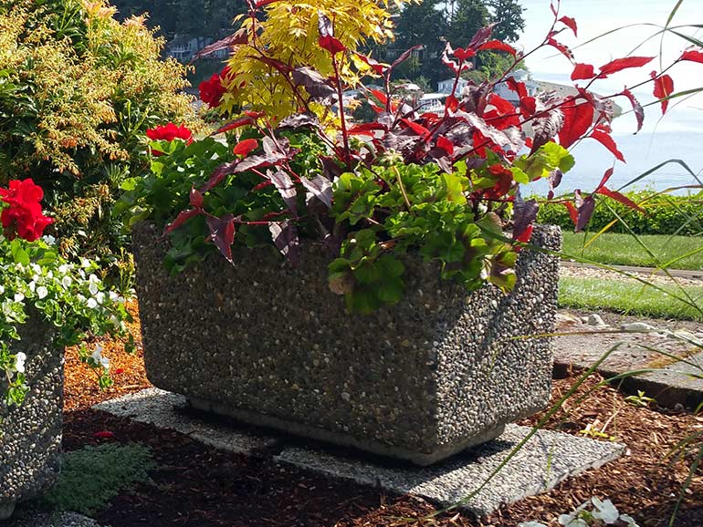 Rectangular cement planters and concrete planter boxes from Ornamental Stone Inc..