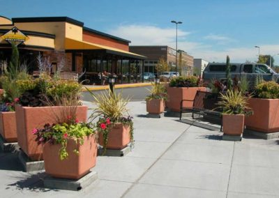 Large Square Concrete Planters - Terra Cotta
