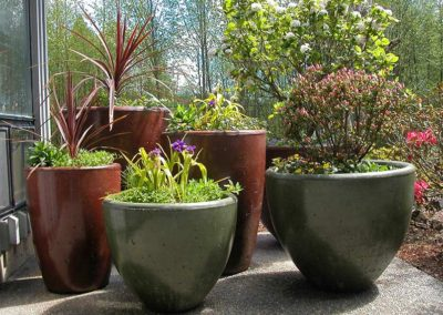 Beautiful Xinh Planter Pots