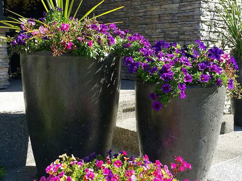 Tall Concrete Planters and Cement Pots - Xinh Series